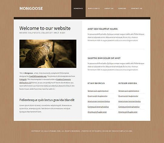 Mongoose - A clean simple straight-forward template designed for any type of website.