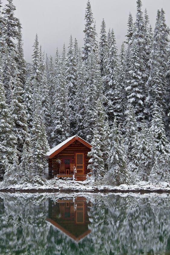 Chalet perdu entre les arbres au bord d'un lac