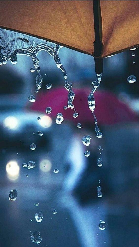 Rain Umbrella 4k Mobile Wallpapers Hd Rain Wallpapers Rain Photography I Love Rain