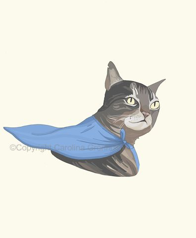 superhero+cat+small+j.jpg 396×480 pixels