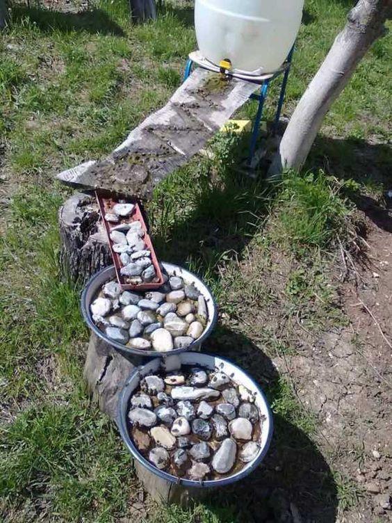 Ruche-Apiculture: Besoin en eau (1/2) - Ruche-Apiculture