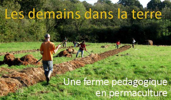 Ressources sur la permaculture vid os et crits de marc - La permaculture c est quoi ...