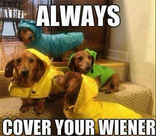 Alwayzzz lol: