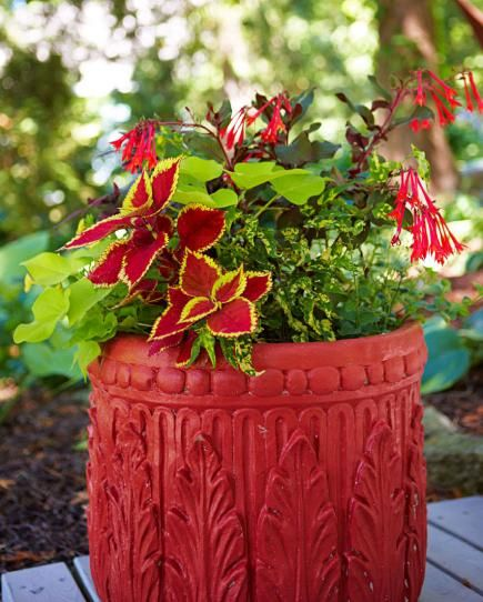 8 Stunning Container Gardening Ideas: 30 Beautiful Container Gardens