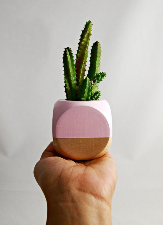 Geometric Succulent Cactus Planter // Blush Wood by seaandasters