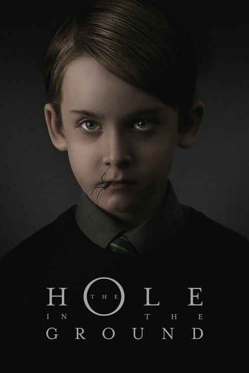The Hole In The Ground 2019 English Movies Full Movies Full Movies Online Free