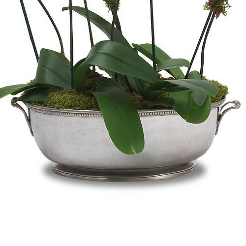 Match Pewter Large Beaded Footed Oval Basin, for counter top with white orchids or other white flowering plant