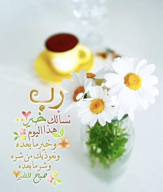 صور مكتوب عليها صباح الخير عالية الجودة مجلة تمر هندي Morning Greeting Good Morning Greetings Beautiful Morning