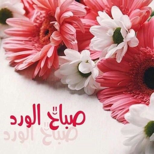 Pin By Rania Aly On صباح الخير Good Morning Arabic Beautiful Morning Morning Images