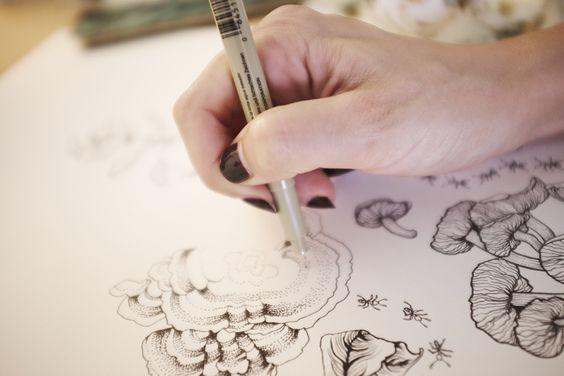 Adriana Picker Sydney Illustrator Botanical Illustration