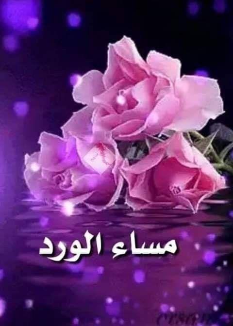 مساااااء لؤلؤي النقاء لمن هم للروح أشقاء وللدرب رفقاء أخوة وأي إخاء كل مساااااء وق Good Night Love Images Good Morning Arabic Good Evening