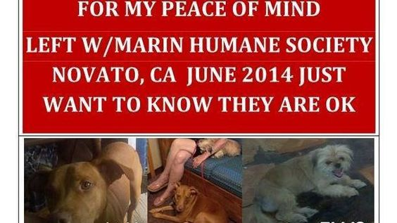 Petition · Marin Humane Society, Novato, CA: Ask the Marin Humane Society to provide the information they have on my former dogs. Adopter personal information may remain confidential. · Change.org