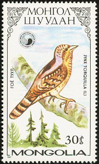 Eurasian Wryneck stamps - mainly images - gallery format