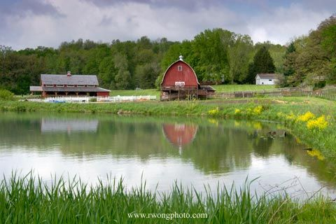 I love water, a red barn and a pond. Sold!