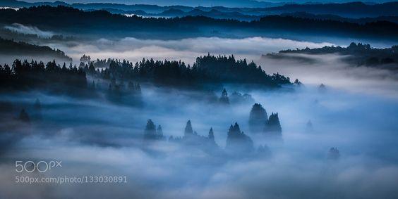 濃い霧あっ雲海wthick fog by yamaely