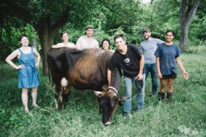 Raw Milk Philadelphia (PA) – Camphill Village Kimberton