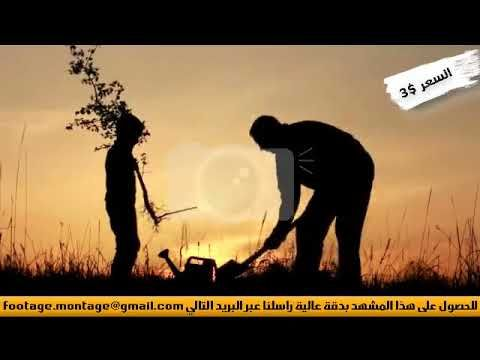 مشهد عن النماء والأمل لأبن يقم بزرع شجيرة مع أبيه لأعمال المونتاج 3863345 Animals Elephant