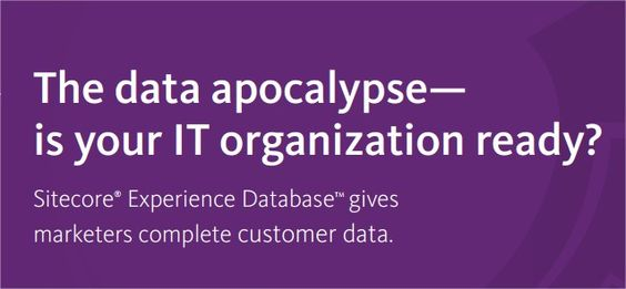 What Marketers Want: An IT Hero. Save Your Marketers From the Data Apocalypse whitepaper