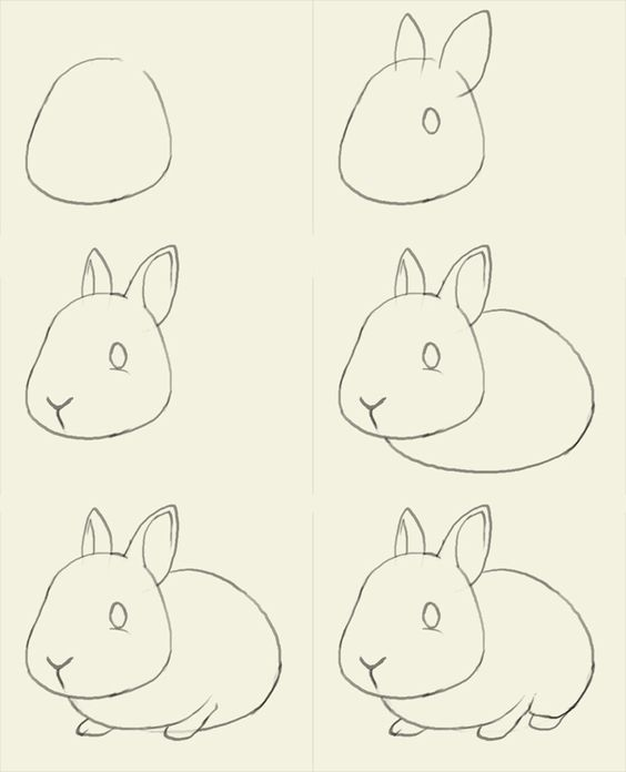 how to draw bunny How to draw bunny: