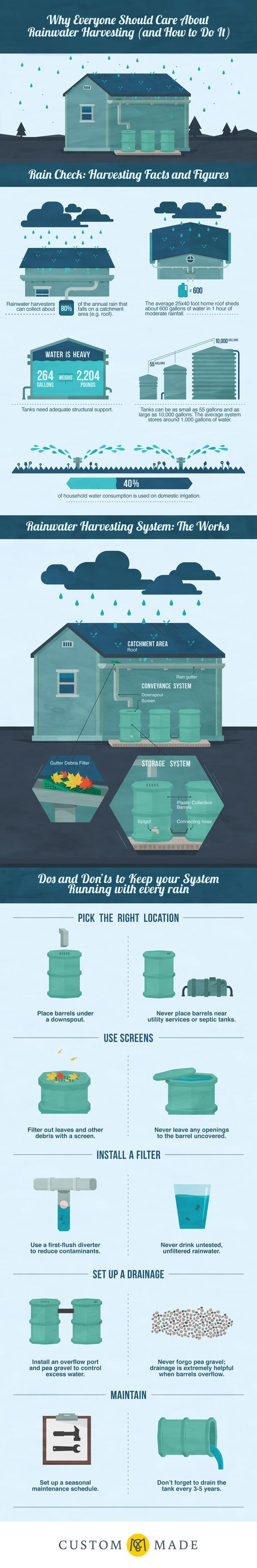 Why Everyone Should Care About Rainwater Harvesting (and How to Do It):
