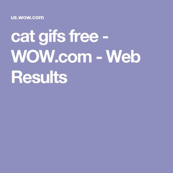 cat gifs free - WOW.com - Web Results