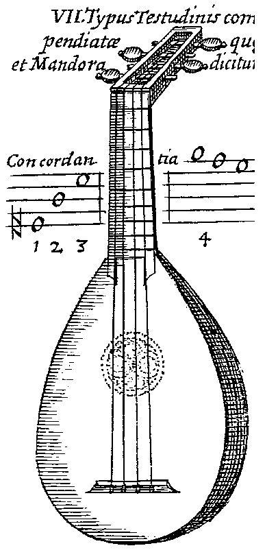 Testudinis Compendiatce quae et Mandora dicitur, Musurgia Universalis (1650)