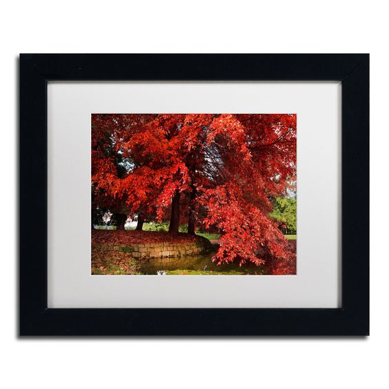 'October' by Philippe Sainte-Laudy Framed Photographic Print
