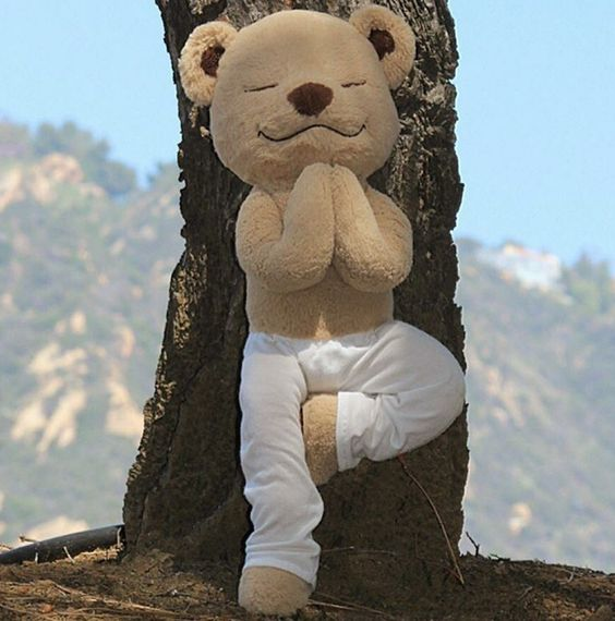 The cutest product ever made - well done! Meddy Teddy, teaches children about yoga