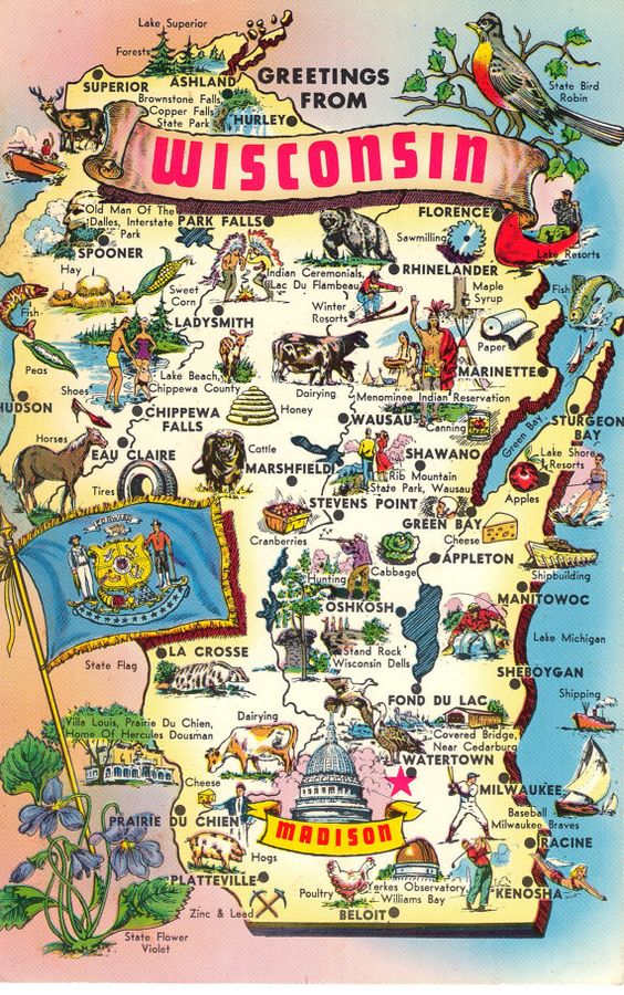 Greetings From Wisconsin  State Map Postcard  US States Postcards And Wisc