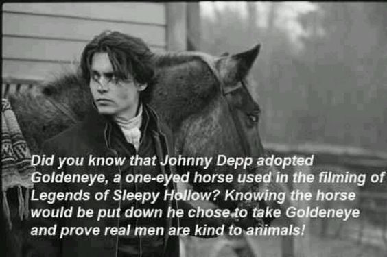 Just another reason to love him. :) Johnny Depp adopted a horse :)