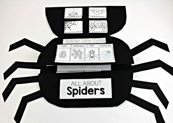 Spider Science Booklet: