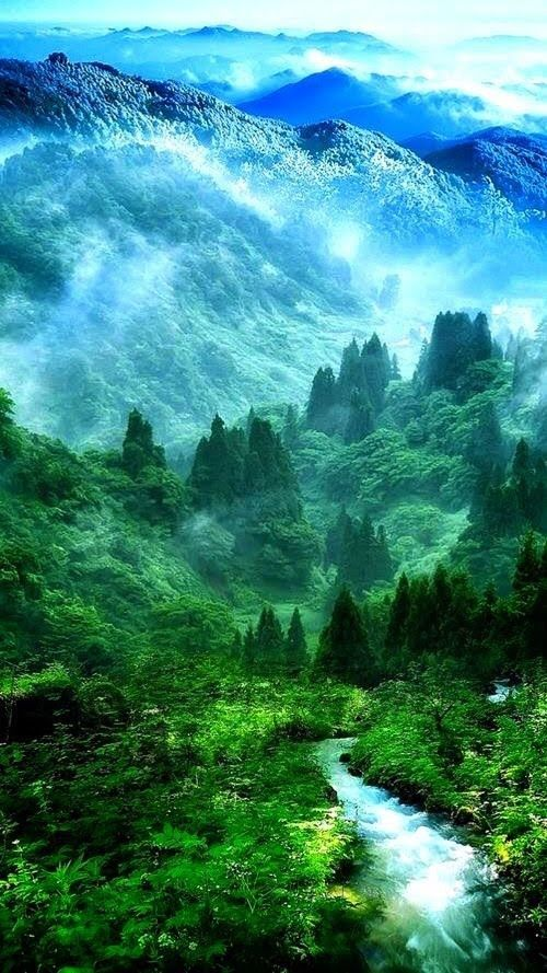 Just A Wish Nature Wallpaper Nature Nature Photography