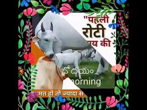 Happy Good Morning Sweet Friends Hindi Message Video Whatsaap