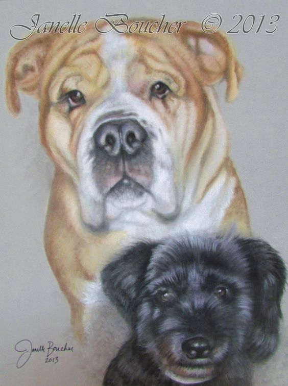 Fender and Millicent ~ Pastel on Velour