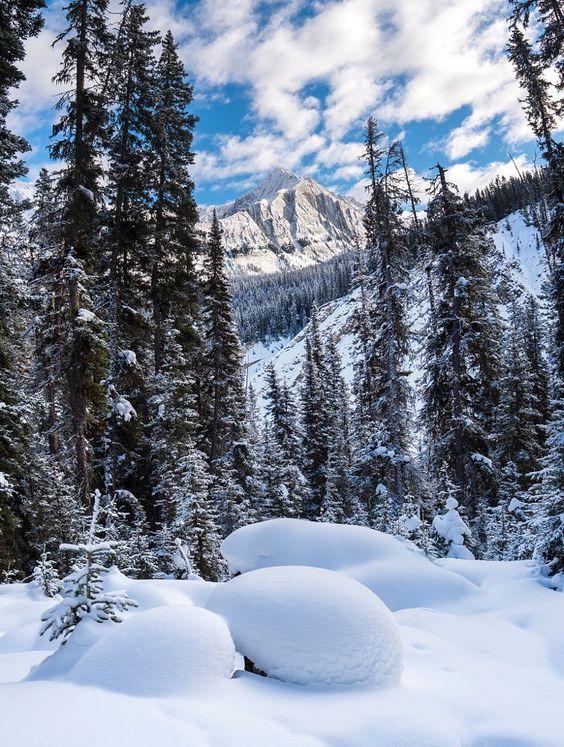 Fresh snow (Banff, Alberta) by Catalin Mitrache on 500px