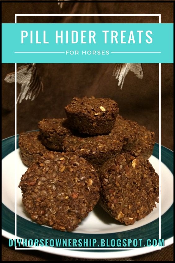Do It Yourself Horse Ownership: DIY: How to Make Pill Hider Horse Treats