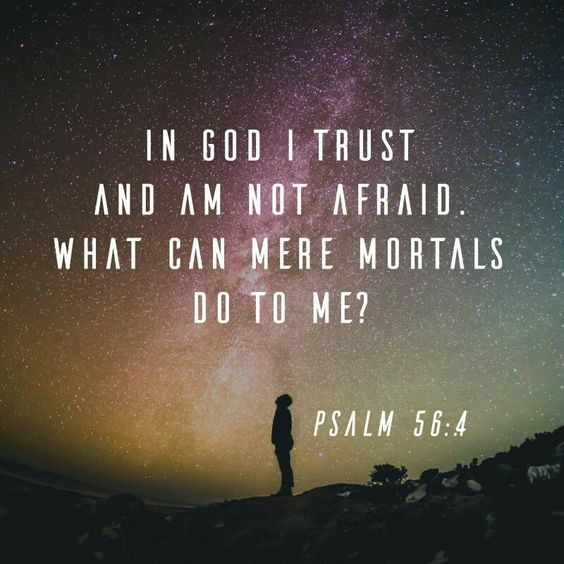 In God, whose word I praise— in God I trust and am not afraid. What can mere mortals do to me?  Psalm 56:4 NIV  http://bible.com/111/psa.56.4.NIV