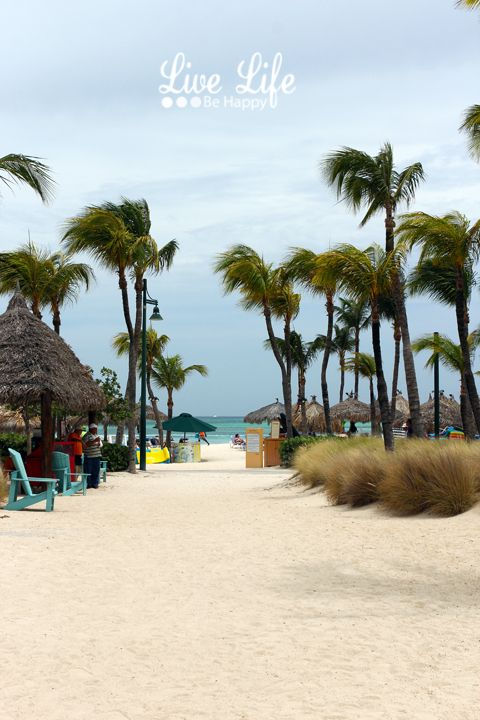 Day 5 Port : Aruba For our Aruba stop, we purchases a day pass to the Occidental Grand Aruba Resort. It is a five star all-inclusive resort.