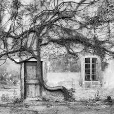 Výsledek obrázku pro černobílé fotografie z města