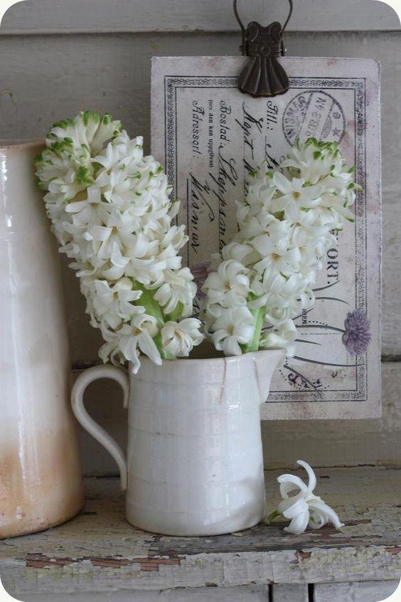 Simple Spring Arrangement - THE BLANK: Hyacinths as cut flowers ~ Hyacinth as cut flower