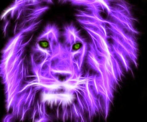 Images Of Purple Lions 1920x1080 Sc Lion Art Cat Art