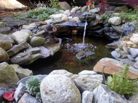 Water garden rock and and backyards on pinterest for Rock ponds designs
