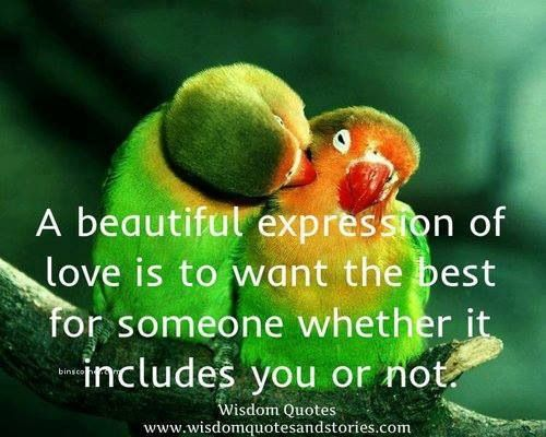 ideas about Cute Birds on Pinterest   Birds  Bluebirds and     Exotic Pets   About com