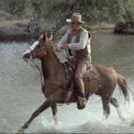 John Wayne:(ur. 26 maja 1907 w Winterset, zm. 11 czerwca 1979 w Los Angeles)- amerykański aktor, reżyser i producent filmowy. Znany z największej ilości ról aż 142 na 157 filmów. m.in: Rio Grande -1950, Rio Bravo-1959, Alamo-1960, Jak zdobywano Dziki Zachód (How the West Was Won)1962, Samotny detektyw McQ (McQ)-1974 i wiele,wiele innych