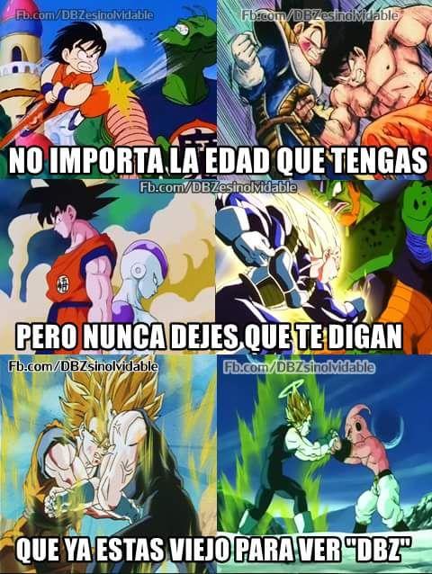 Pin De Silvia Vanessa Castro Lopez En Memes De Dragon Ball Meme Dibujo Memes De Anime Video De Dragon