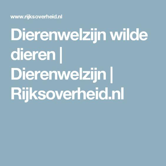 Dierenwelzijn wilde dieren | Dierenwelzijn | Rijksoverheid.nl