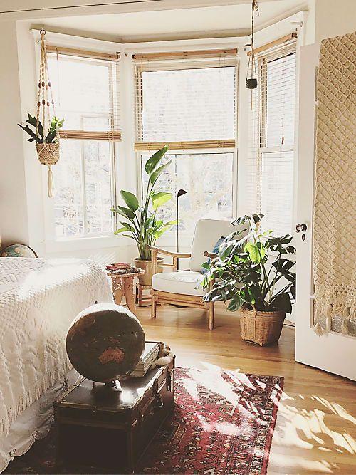 Das sind die besten Pflanzen für jedes Zimmer. | Ideen fürs ...