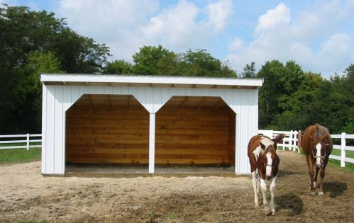 Run In Shed Horses Shedplans In 2020 Run In Shed Shed Plans Shed