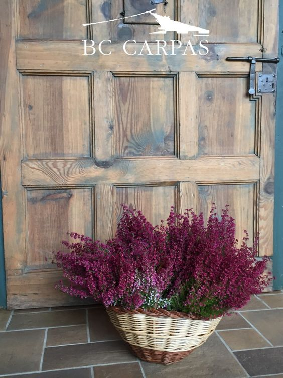 Decoración e ideas en otoño.www.bc-carpas.com