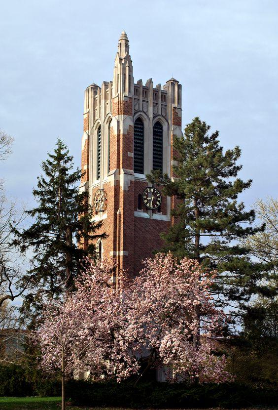 Michigan State University Tower